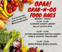OPAA! Grab-n-Go Food Bags